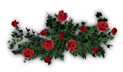 Pin red roses psd frame on pinterest